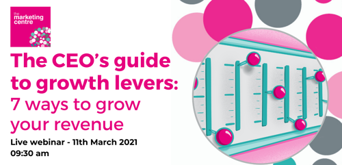 Copy of CEOs GUIDE TO GROWTH LEVERS FINAL Jan